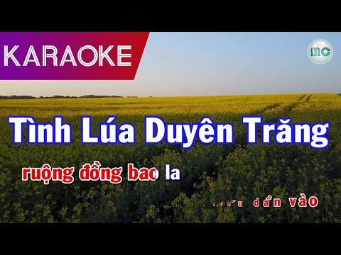 Tình Lúa Duyên Trăng Karaoke - Song Ca - Beat Chuẩn