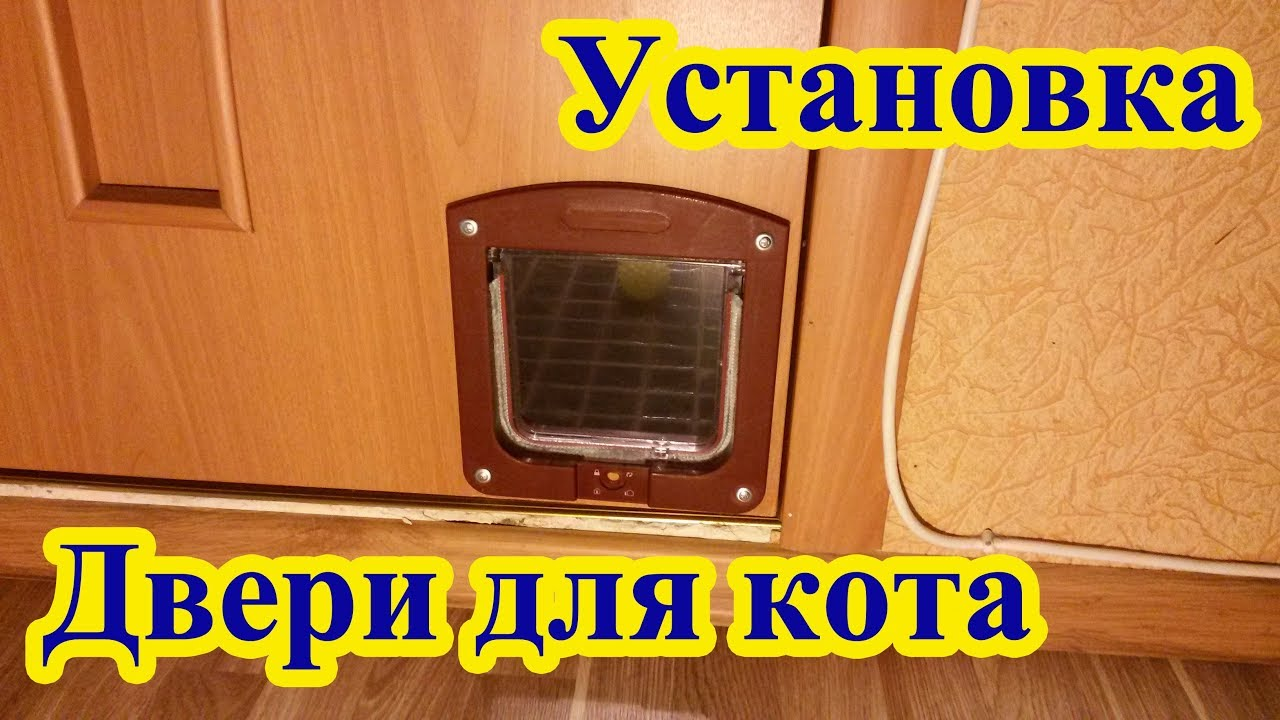 Дверь для кота TRIXIE 2-Way Cat Flap - YouTube