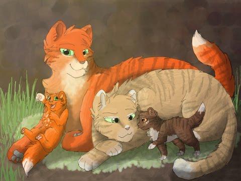 коты-воители огнезвезд картинки