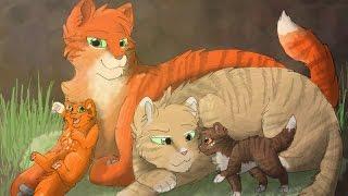 Коты воители- Песчаная Буря и Огнезвезд(Заказ с канала -Vlada Мур Мяу)