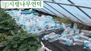페트병을 이용한 온실과 비닐하우스 에너지 저장고 ⛄️