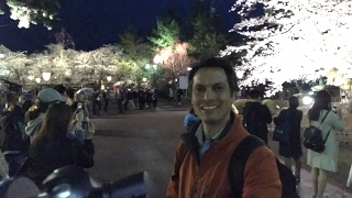 Hirosaki Night Sakura Fest & Street Food Madness