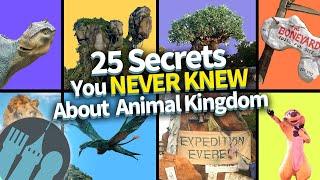 25 Secrets You Never Knew About Animal Kingdom