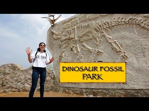 Dinosaur Fossil Park || Ahmedabad