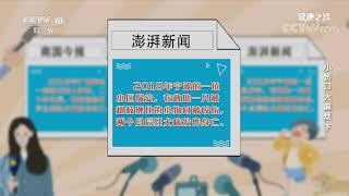 [健康之路]小伤口 大麻烦(下) 狂犬病发作案例| CCTV科教