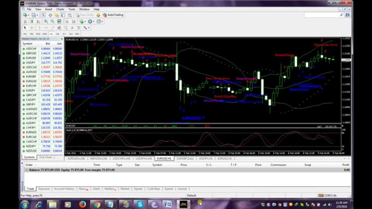 Signals Bay | Free forex trading signals
