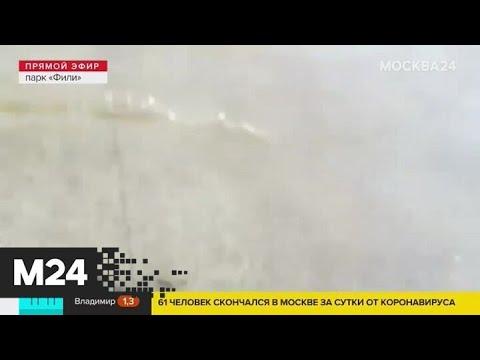 Сильные дожди ожидаются в Москве 3 июня - Москва 24