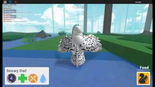 (ROBLOX) BIRD SIMULATOR Snowy Owl and Golden Eagle RarePiglet