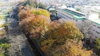 見沼代用水西縁 12月の風景 ドローン空撮 埼玉県さいたま市 2018年12月4日撮影