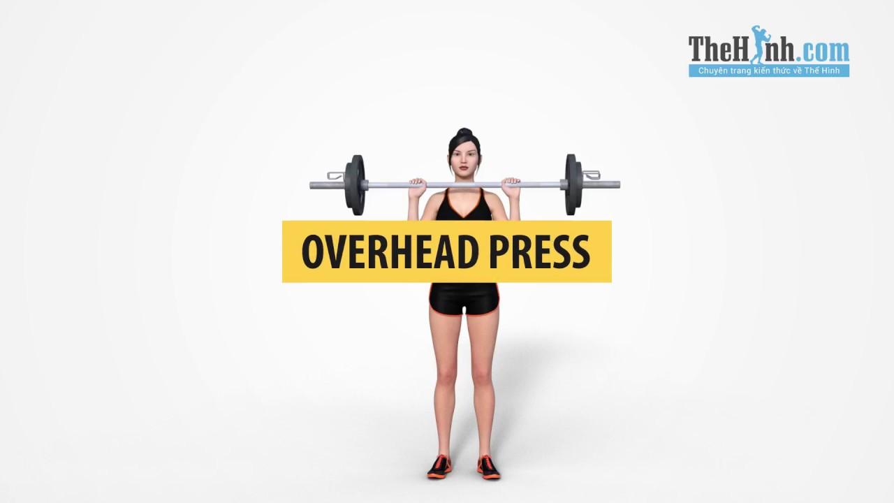 Overhead Press – Bài tập số 1 cho cơ vai