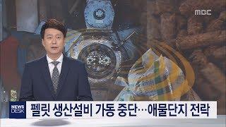펠릿 생산설비 가동 중단 애물단지 전락 이소현