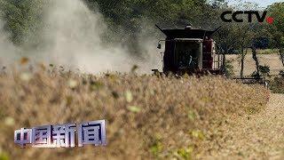 [中国新闻] 美政府将为农民发放160亿美元补贴 美业内人士:农民更想要贸易而非补贴 | CCTV中文国际