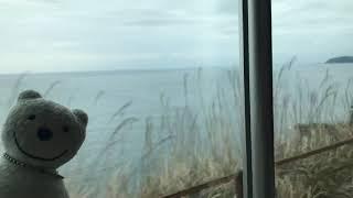 クマ散歩:JR東海道線で早川から根府川に転送