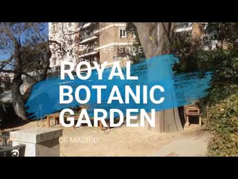 Visit Madrid's Royal Botanic Garden