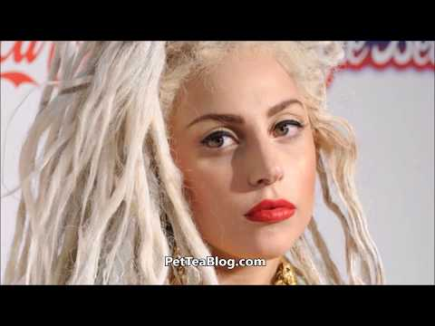 Amanda Seales Calls Lady Gaga out on Racist gets BASHED & Responds on VIDEO 😒😮t