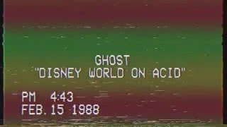Disney World On Acid (AUDIO)