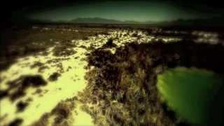 Fondip Band Cover Sting-Desert Rose