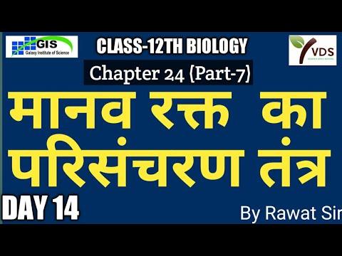 12th BIOLOGY Ch.-24 Part-7 l मानव रक्त का परिसंचरण तंत्र l ...