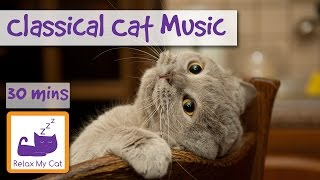 Classical Music for Cats! Classical Music with Orchestra and Piano to Relax Your Cat!