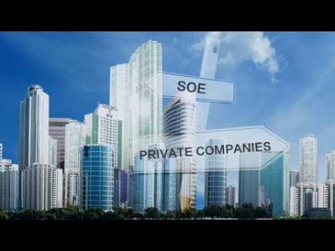 Rethinking state-owned enterprises