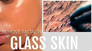How to Get Rid of Facial Hair| Dermaplaning for Flawless 'GLASS SKIN'