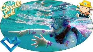 เด็กจิ๋ว@สิมิลัน กินข้าว ดำน้ำ (ทริปเกาะสิมิลัน-เกาะรอก#3) [N'Prim W306]