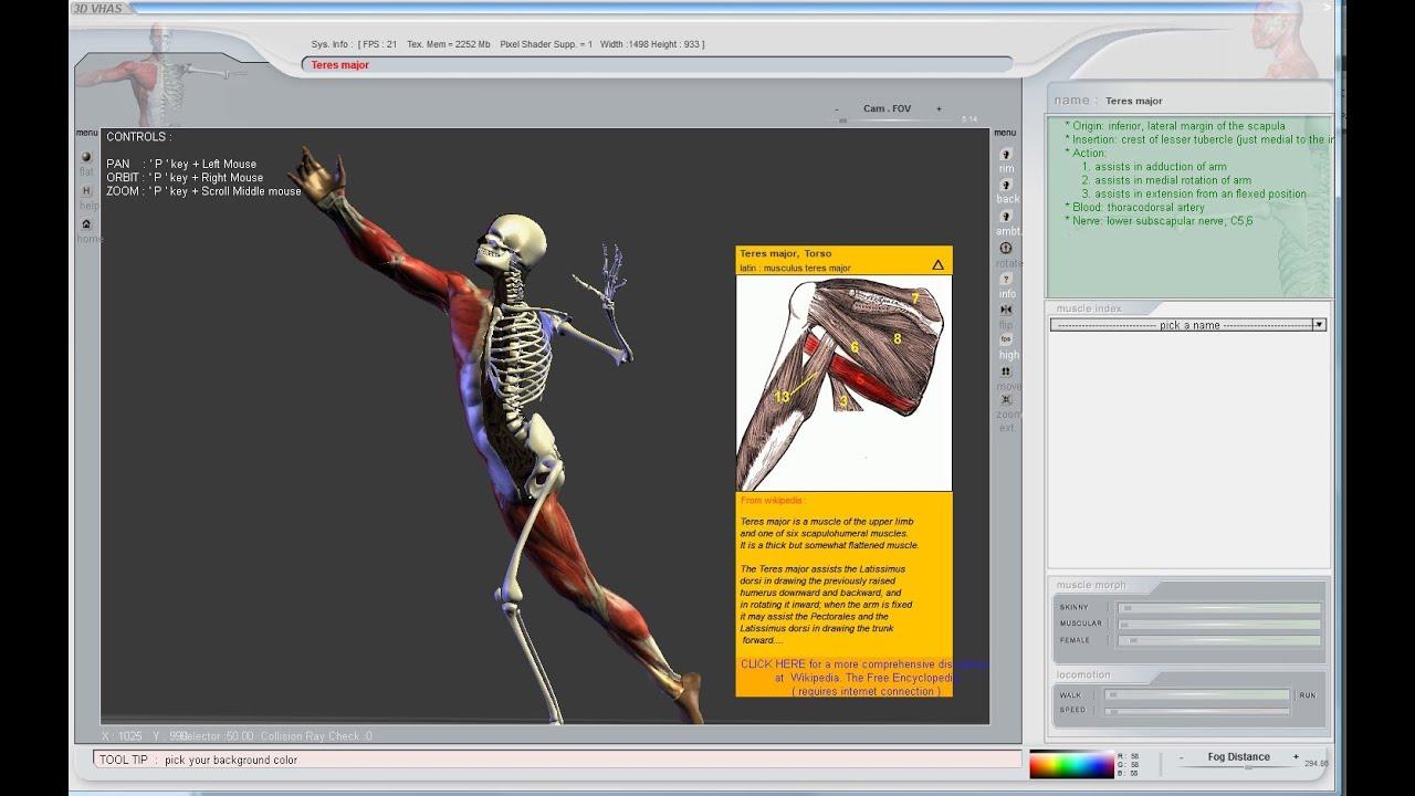 Learn Human Anatomy The Easy Way 3d Virtual Software Youtube
