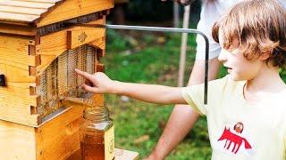 Flow Hive Harvest Video - Meet the Beekeeper Philip Waters