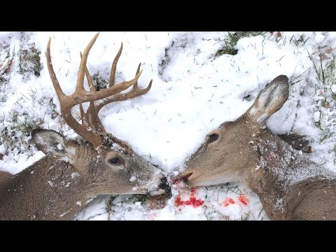 1 Thrilling Hunt, 2 Deer Down!!! Self-Filmed Hunt