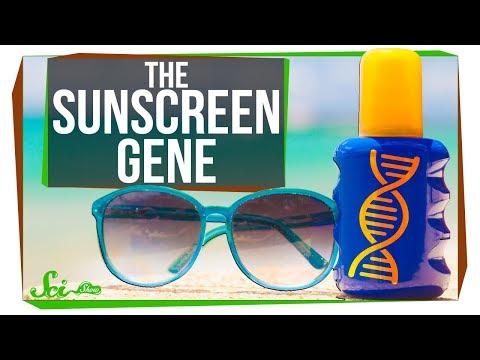 The Strange Case of the Missing Sunscreen Gene