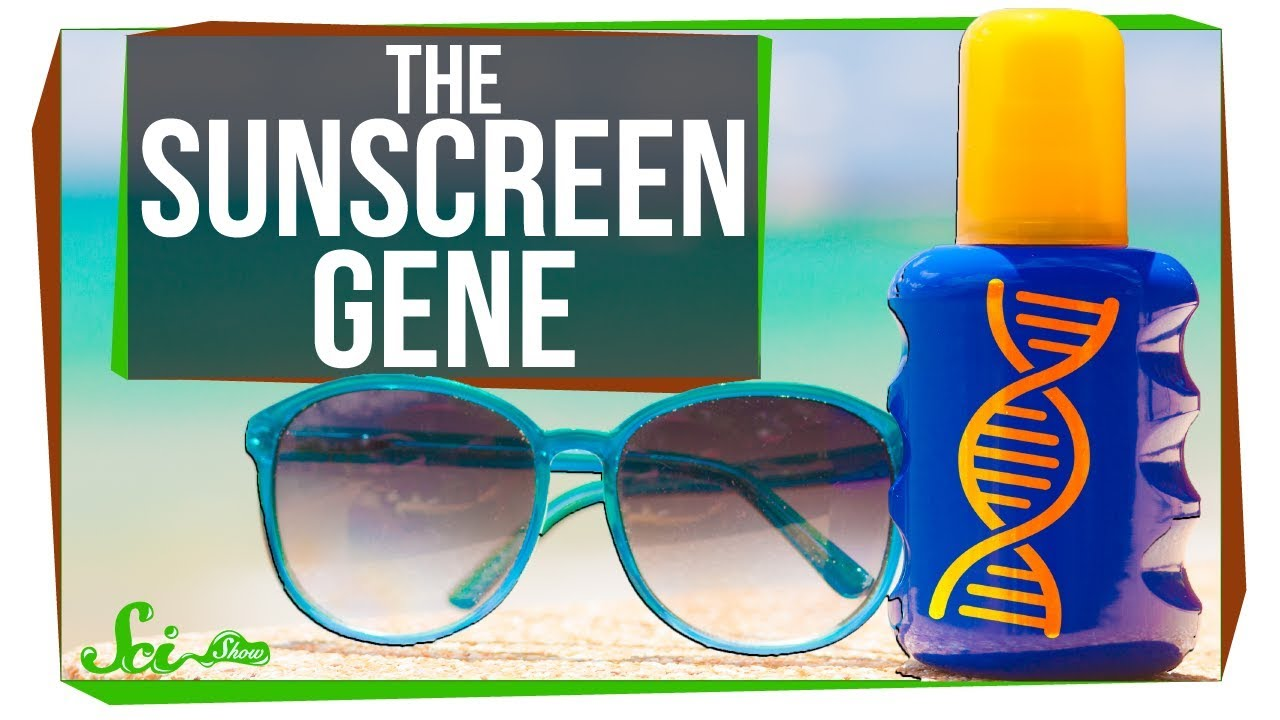 the-strange-case-of-the-missing-sunscreen-gene