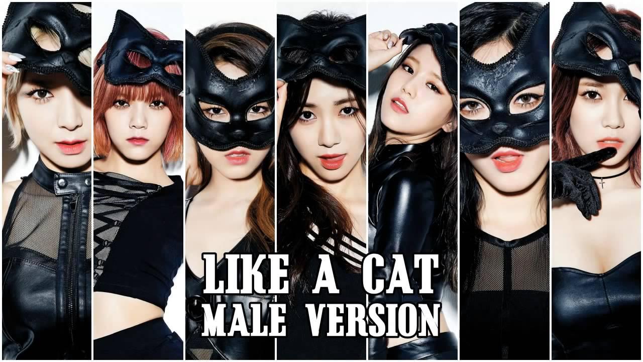 AOA Like A Cat Male Version - YouTube