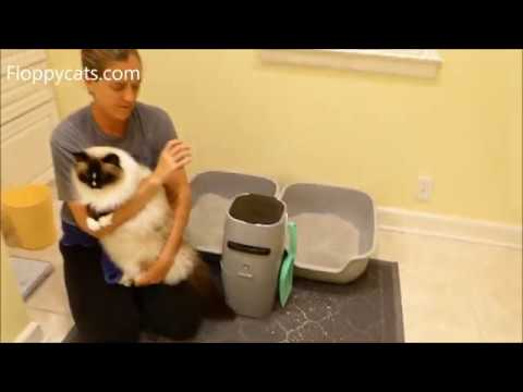 Jumbo Cat Litter Box Mat With Scatter Control By