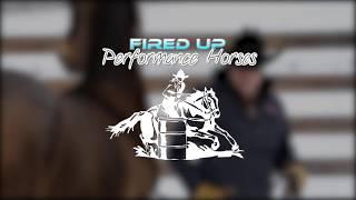 FIRED UP PERFORMANCE HORSES ~ Stephanie Fakner