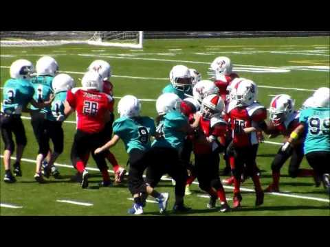 Santa Fe Venom Youth Football Beast mode #20