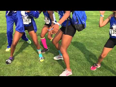 Trotter Chronicles 23 (Hershey Youth Championship, Chicago)
