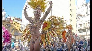 C0014 第37回 浅草サンバカーニバル 朝香りほ Asakusa Samba Carnival 2...