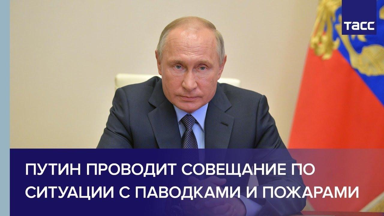 Владимир Путин проводит совещание по ситуации с паводками и пожарами на территории России