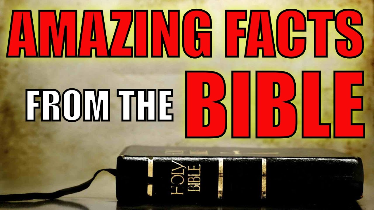 5 MIND-BLOWING FACTS FROM THE BIBLE - YouTube