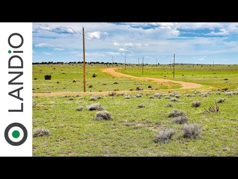Land For Sale in Colorado : 40 Acres with Electricity, Telecom & Road Frontage near Walsenburg, CO