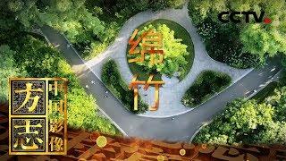 《中国影像方志》 第147集 四川绵竹篇 坚如翠竹 美若玫瑰 | CCTV科教
