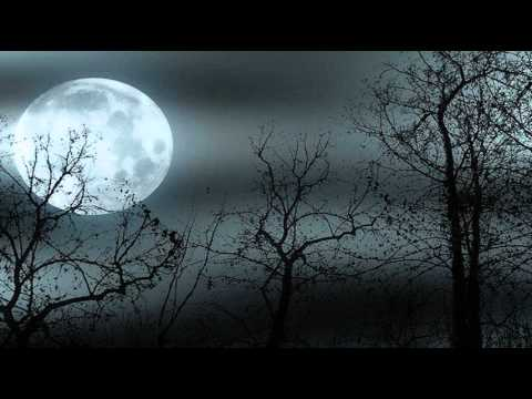 Moonlight Sonata [Ludwig van Beethoven]