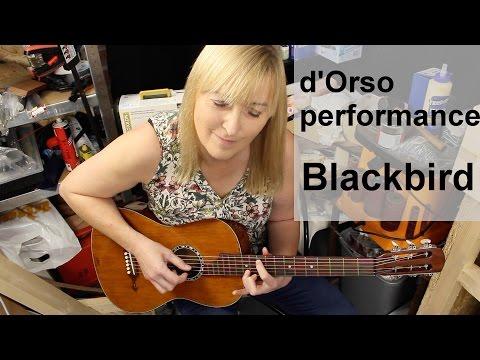 19th century d'Orso parlour guitar   Blackbird