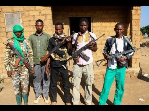 New Rebel Group 3R Emerges in Central African Republic
