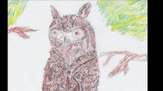 Видео к году экологии 3 классы