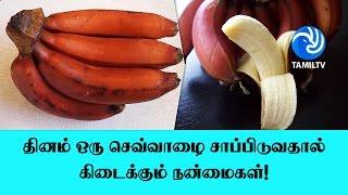 Red Banana / Sevvazhai – Nutrition Facts & Health Benefits