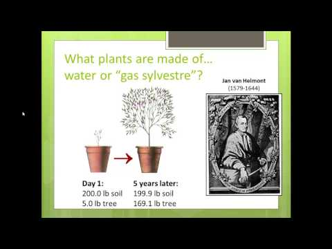 photsynthesis experiment Photosynthesis, generally, is the synthesis of sugar from light, carbon dioxide and water, with oxygen as a waste product it is arguably the most important biochemical pathway known nearly all life depends on it.