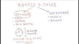 Железодефицитная анемия 1