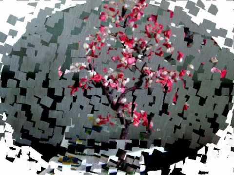 деревья на которых растут самоцветы - 2_0001.wmv