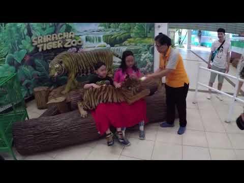 Sriracha Tiger Zoo - Thailand